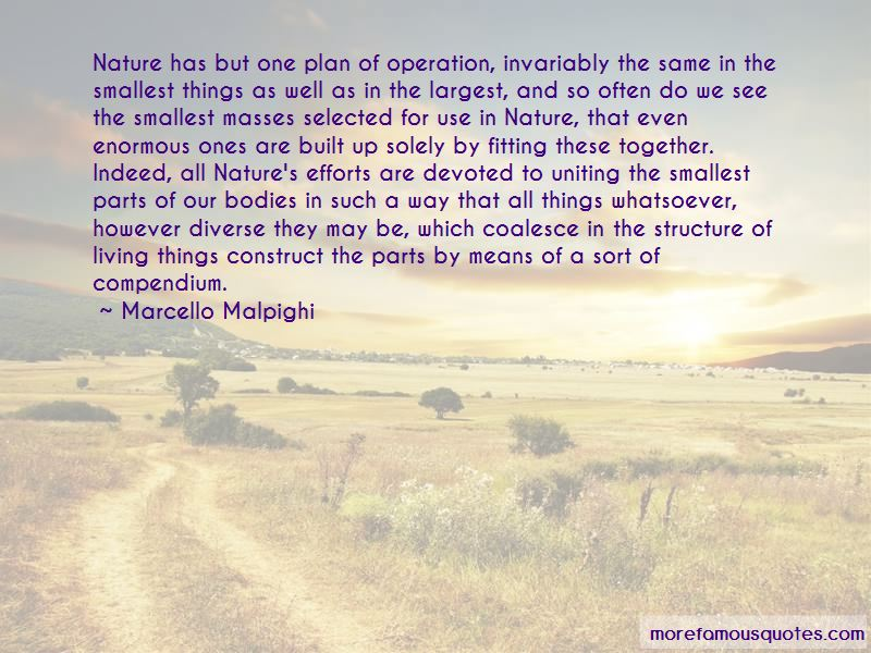 Marcello Malpighi Quotes Pictures 3