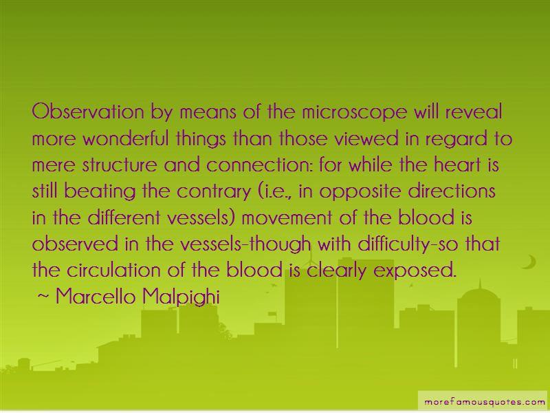 Marcello Malpighi Quotes Pictures 4