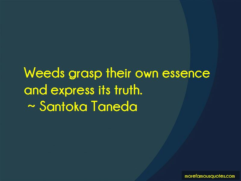 Santoka Taneda Quotes Pictures 2