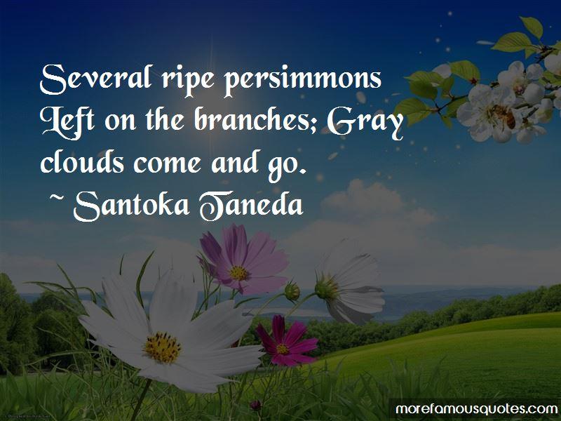 Santoka Taneda Quotes