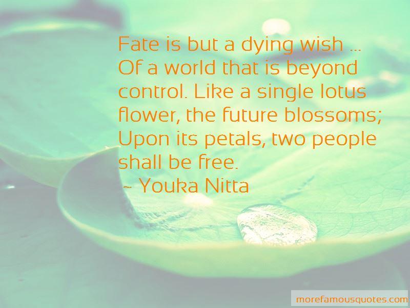 Youka Nitta Quotes