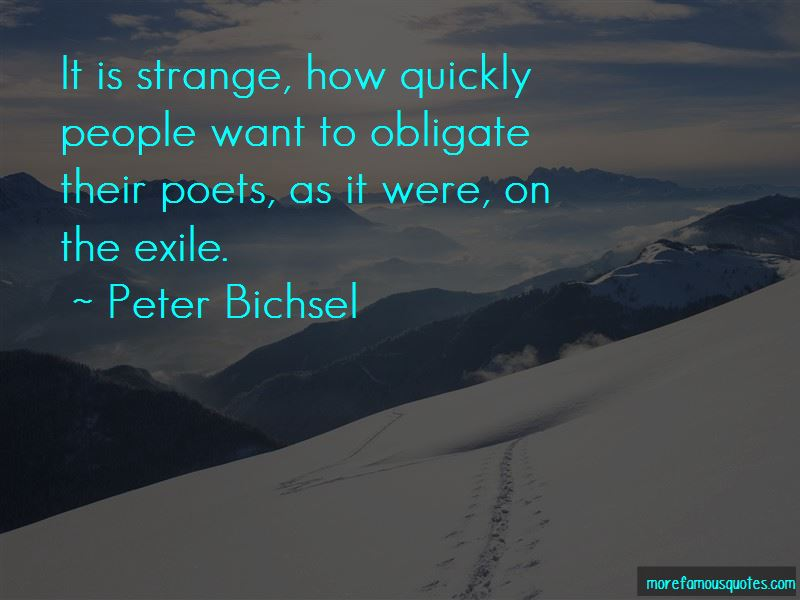 Peter Bichsel Quotes Pictures 4