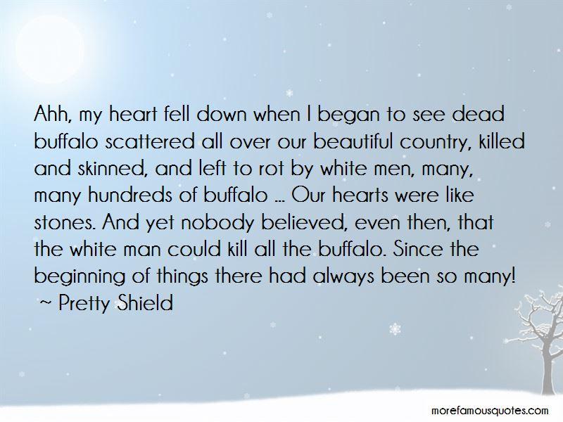 Pretty Shield Quotes