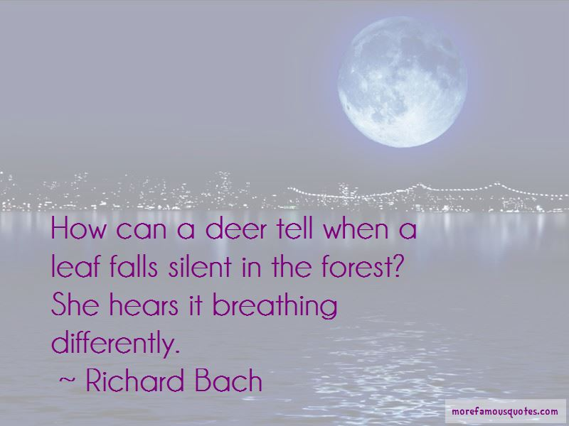 Richard Bach Quotes Pictures 3