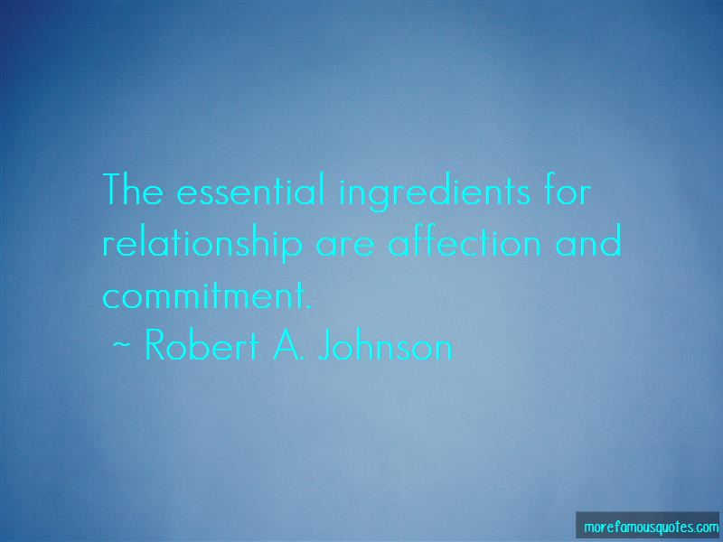Robert A. Johnson Quotes