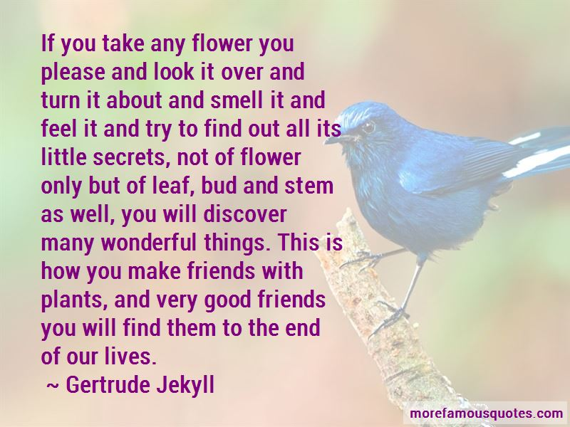 Gertrude Jekyll Quotes Pictures 4