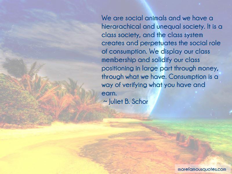 Juliet B. Schor Quotes Pictures 4