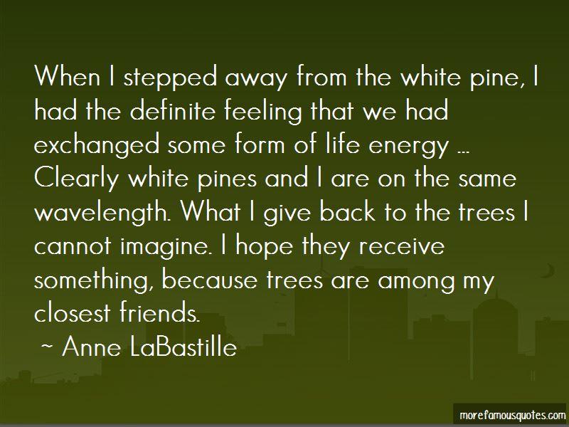 Anne LaBastille Quotes