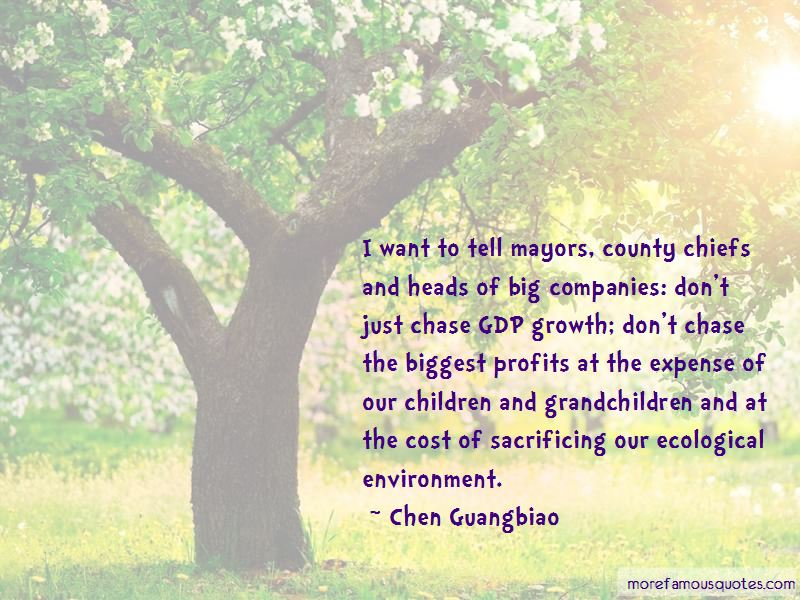 Chen Guangbiao Quotes Pictures 4