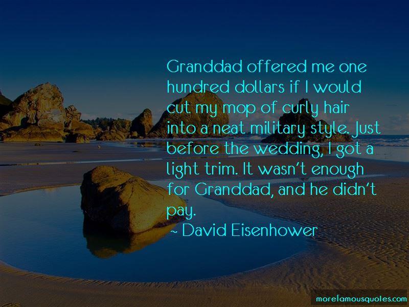 David Eisenhower Quotes