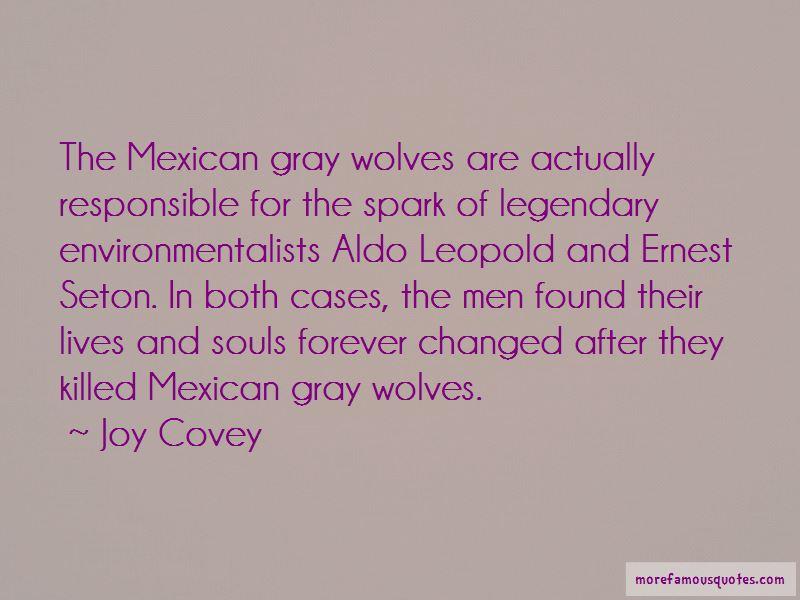 Joy Covey Quotes