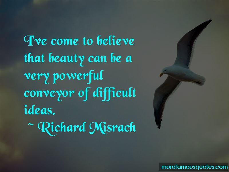 Richard Misrach Quotes