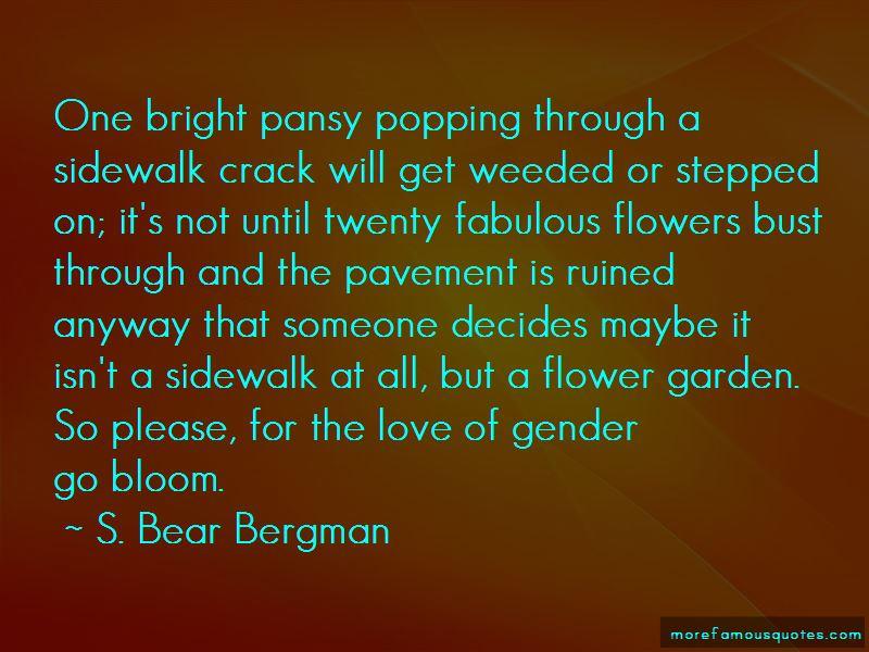 S. Bear Bergman Quotes Pictures 3