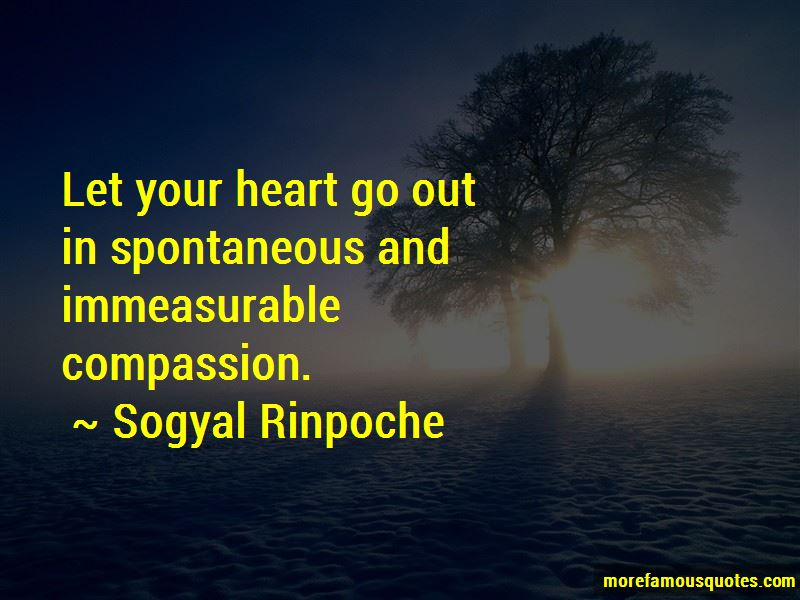 Sogyal Rinpoche Quotes