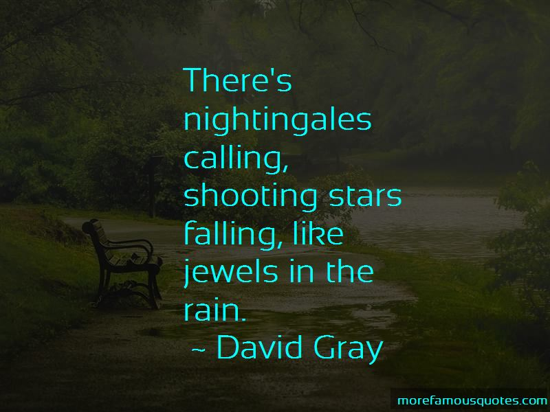 David Gray Quotes Pictures 3