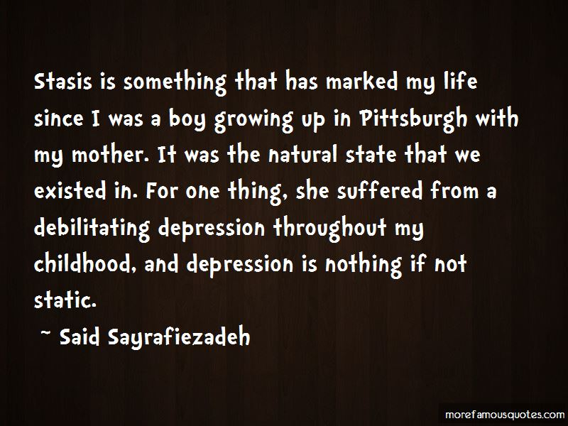 Said Sayrafiezadeh Quotes Pictures 3
