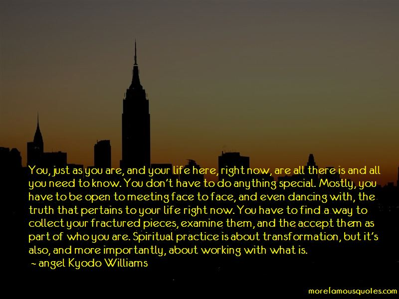 Angel Kyodo Williams Quotes