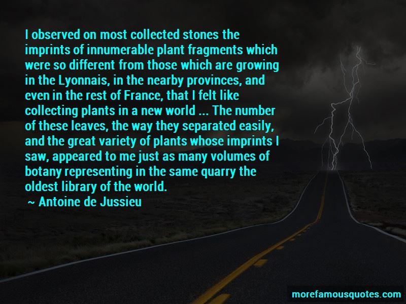 Antoine De Jussieu Quotes