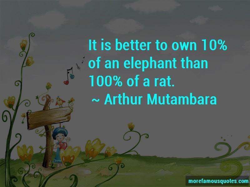 Arthur Mutambara Quotes
