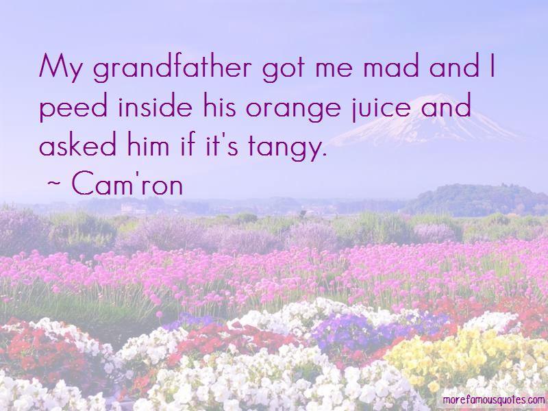 Cam'ron Quotes Pictures 3