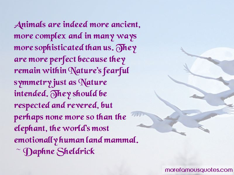 Daphne Sheldrick Quotes