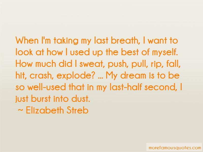 Elizabeth Streb Quotes Pictures 3