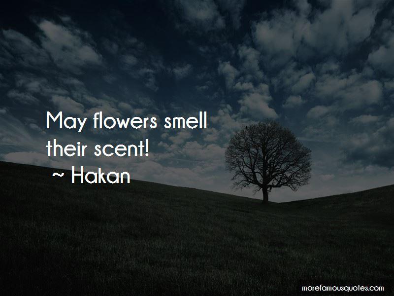 Hakan Quotes
