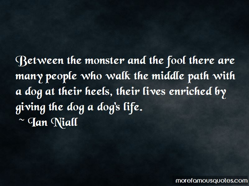 Ian Niall Quotes Pictures 3