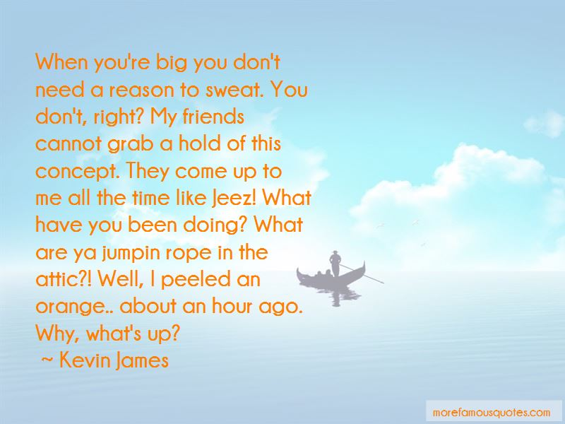 Kevin James Quotes Pictures 4