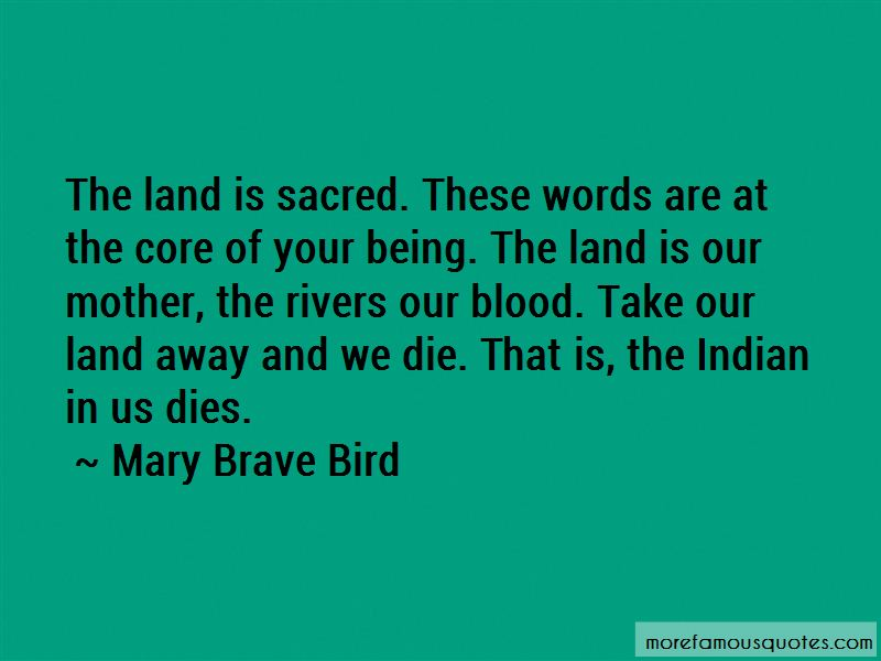 Mary Brave Bird Quotes Pictures 2