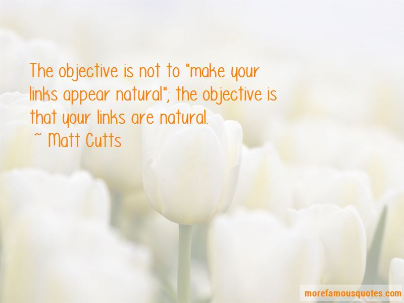 Matt Cutts Quotes