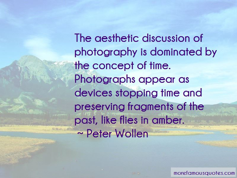 Peter Wollen Quotes