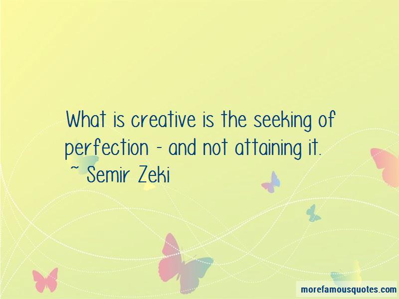 Semir Zeki Quotes