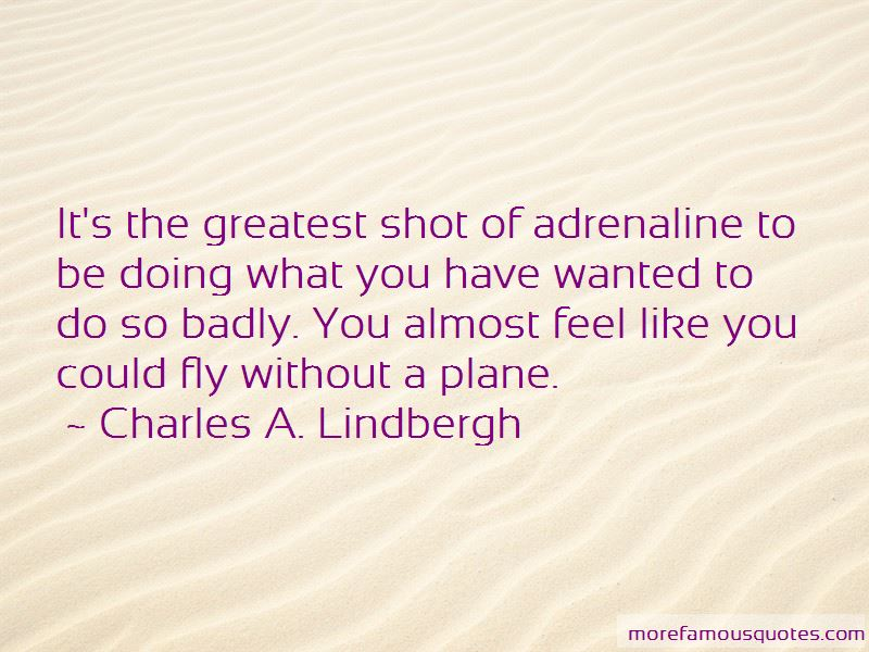Charles A. Lindbergh Quotes Pictures 4