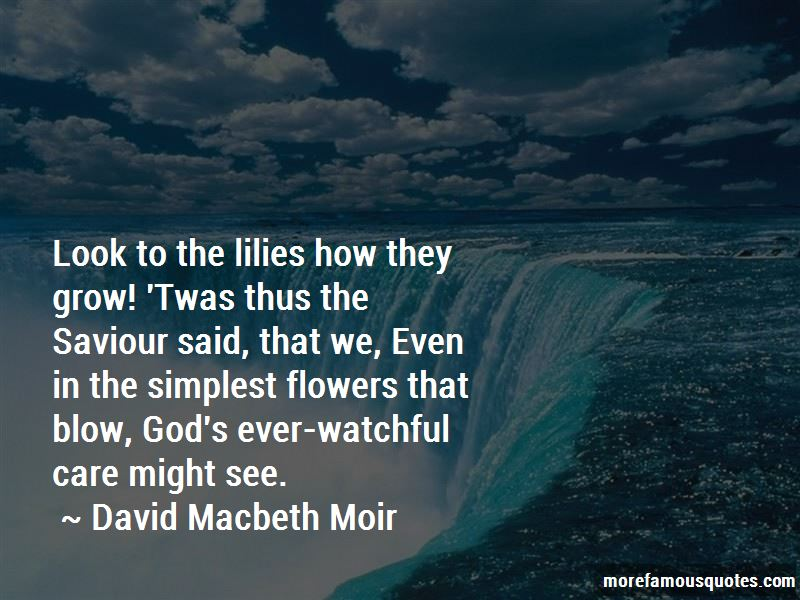 David Macbeth Moir Quotes Pictures 2