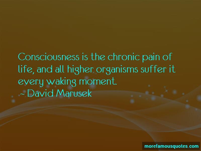 David Marusek Quotes Pictures 4