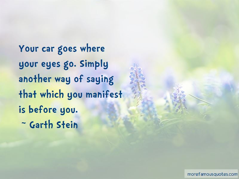 Garth Stein Quotes Pictures 3
