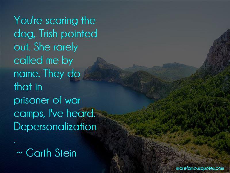 Garth Stein Quotes Pictures 4