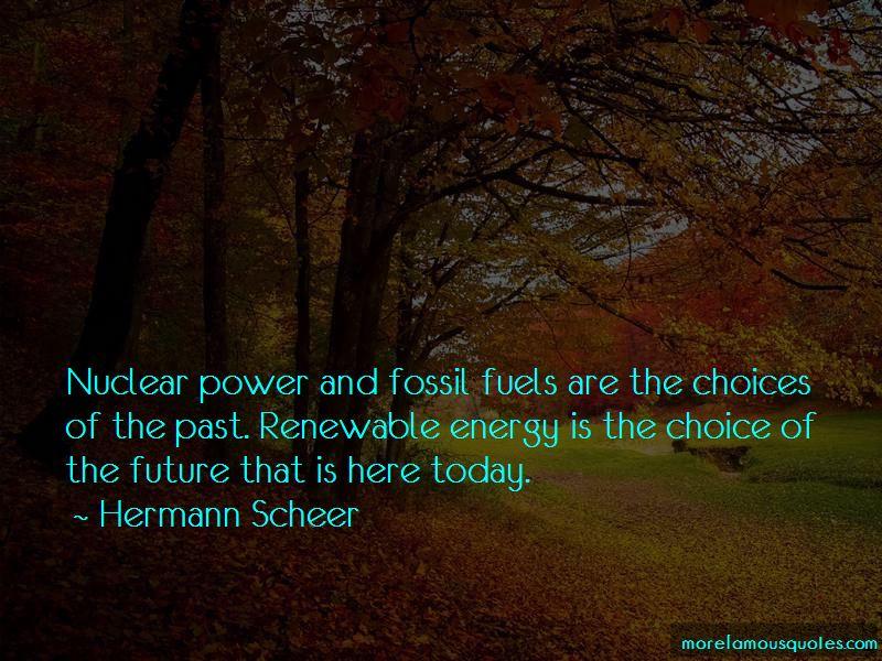 Hermann Scheer Quotes