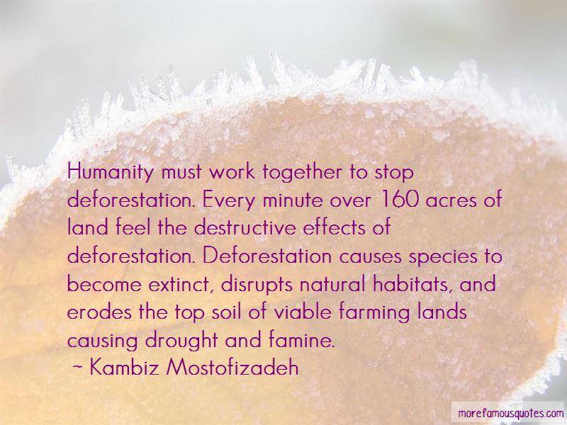 Kambiz Mostofizadeh Quotes Pictures 4