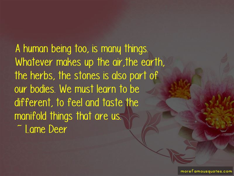 Lame Deer Quotes Pictures 2