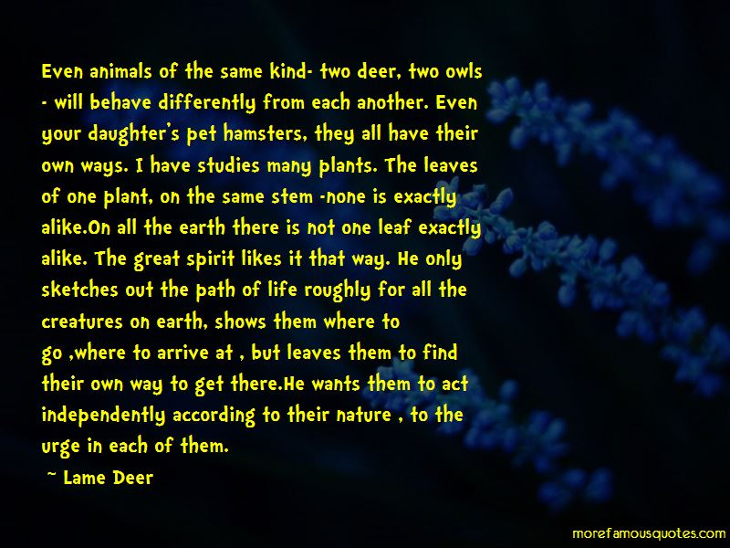 Lame Deer Quotes Pictures 3