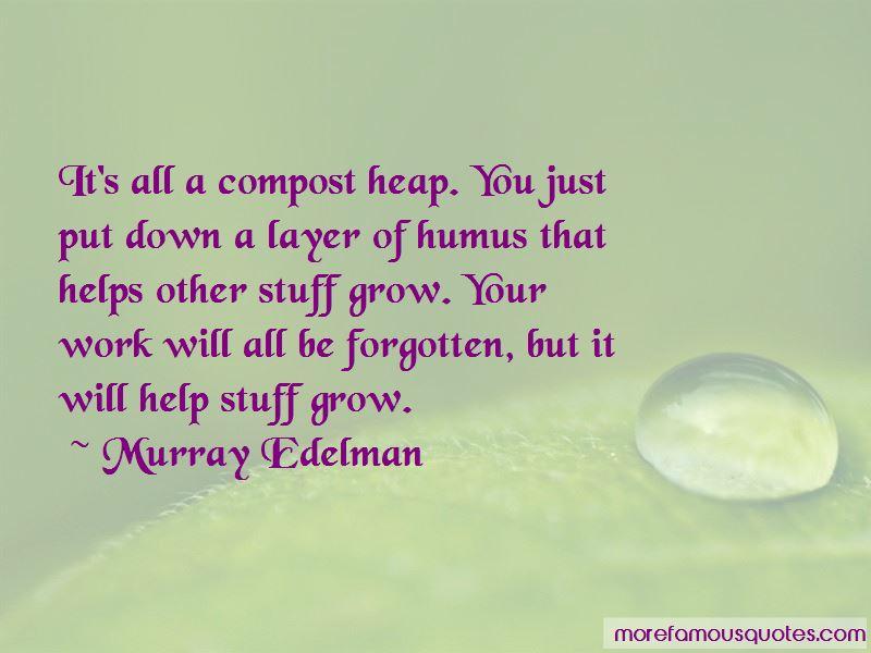 Murray Edelman Quotes