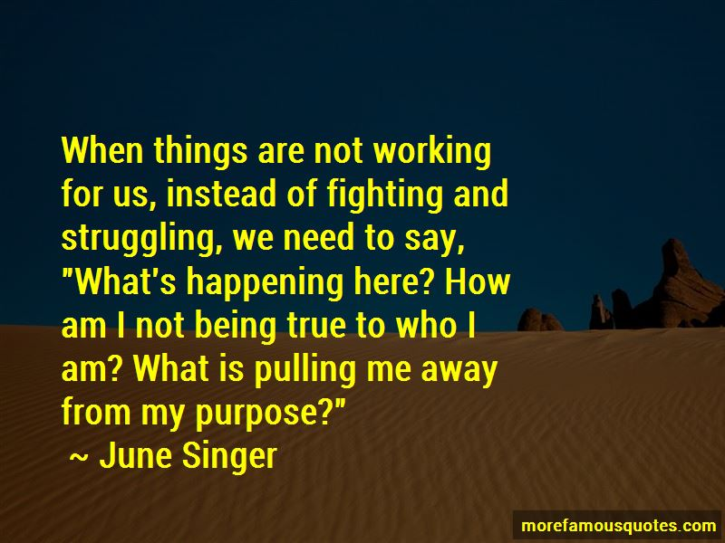 June Singer Quotes Pictures 4