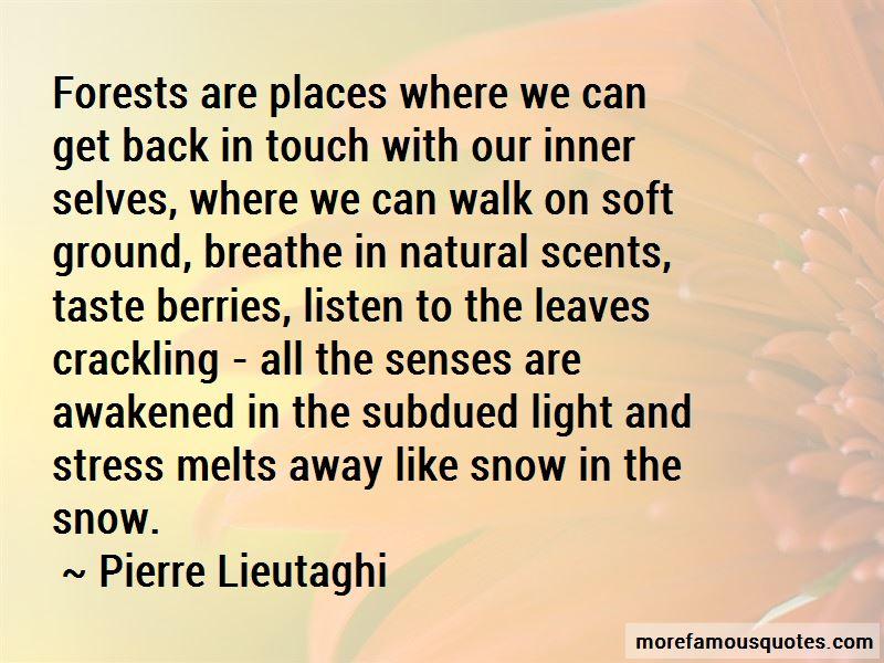 Pierre Lieutaghi Quotes