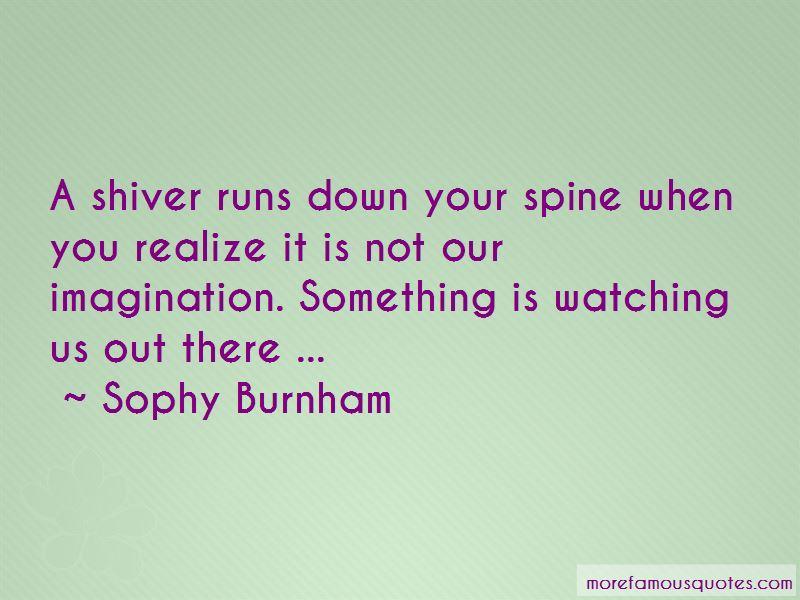 Sophy Burnham Quotes