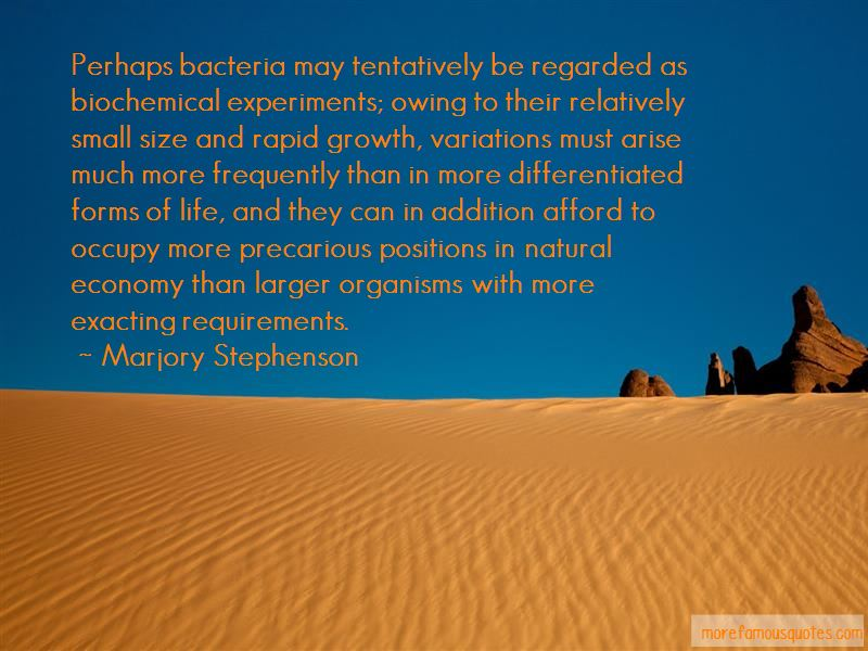 Quotes About Requirements
