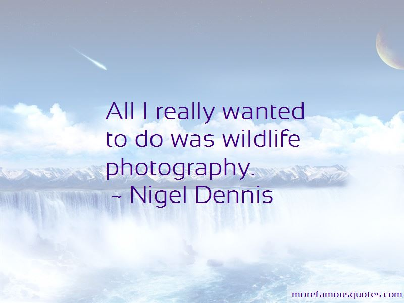 Quotes About Wildlife Photography