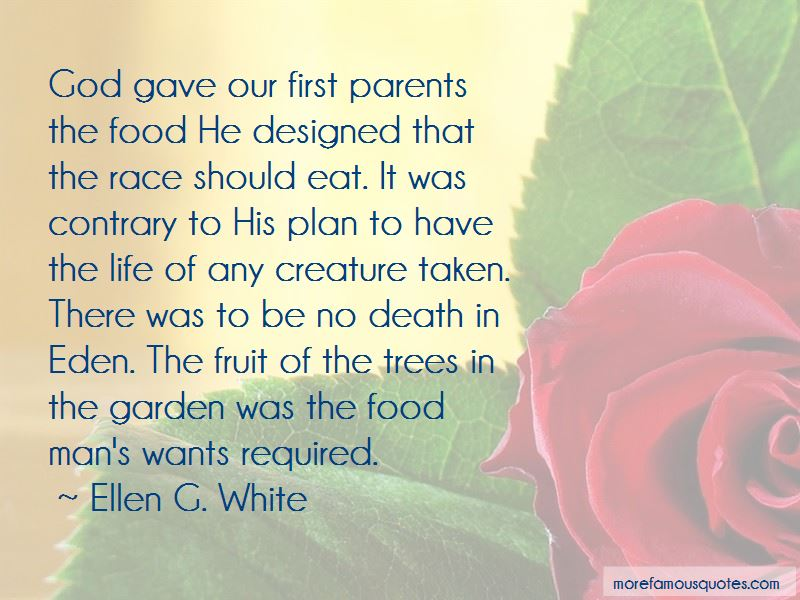 God Plan For Me Quotes Pictures 4