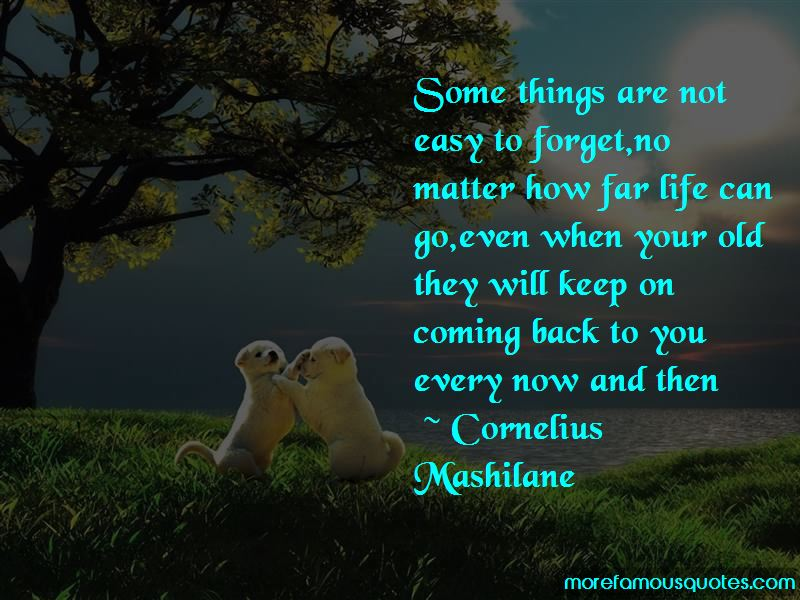 Quotes About Not Easy To Forget